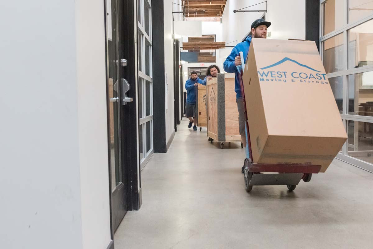 Office moving team pushing dollies through commercial building