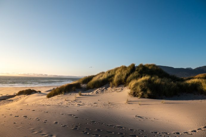 Sandy Beach Dunes   Top Reasons to Move to Seaside, Oregon [A Complete Guide